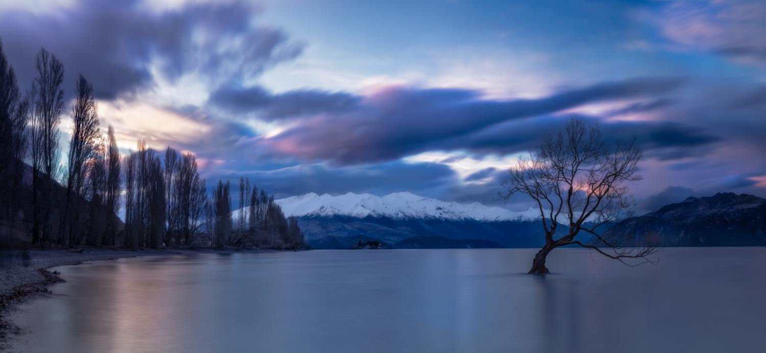 Landscape Photography Workshop Tour - Lake Wanaka Tree, New Zealand