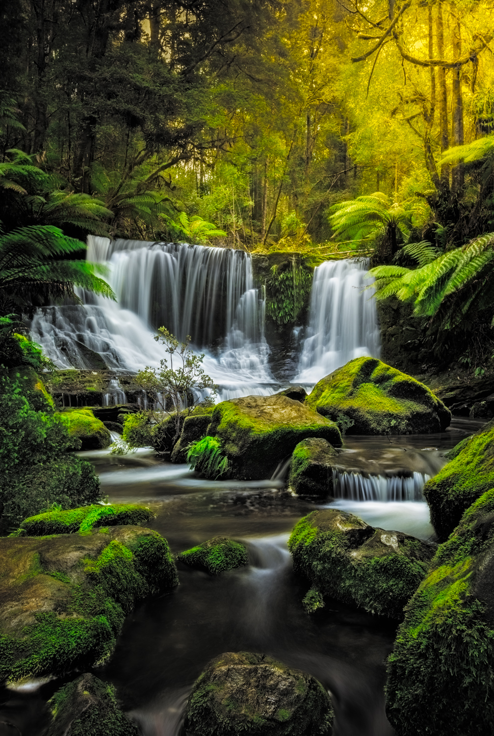 Landscape Photography Workshop Tours - Russel falls, Tasmania