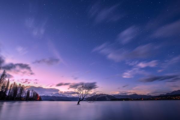 Landscape Photography Workshop Tour - The Wanaka Tree, New Zealand by VivaKarolina