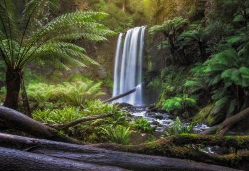 hopetoun falls australia fine art print