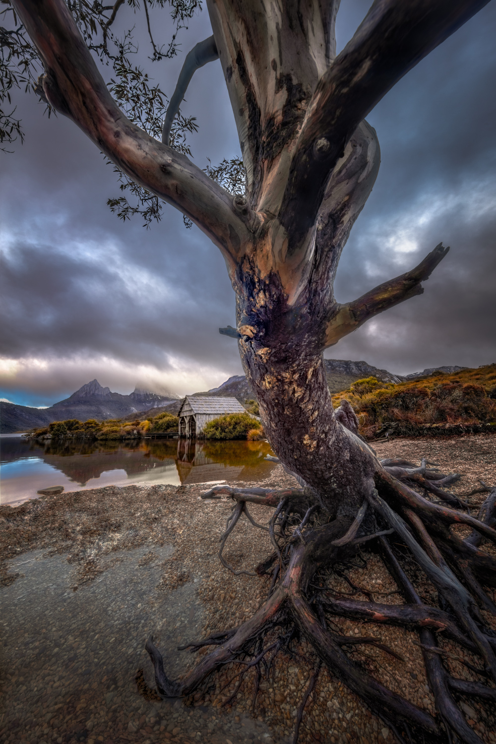 Landscape Photography Workshop Tours - Cradle Mountain, Dove Lake Boatshed, Tasmania