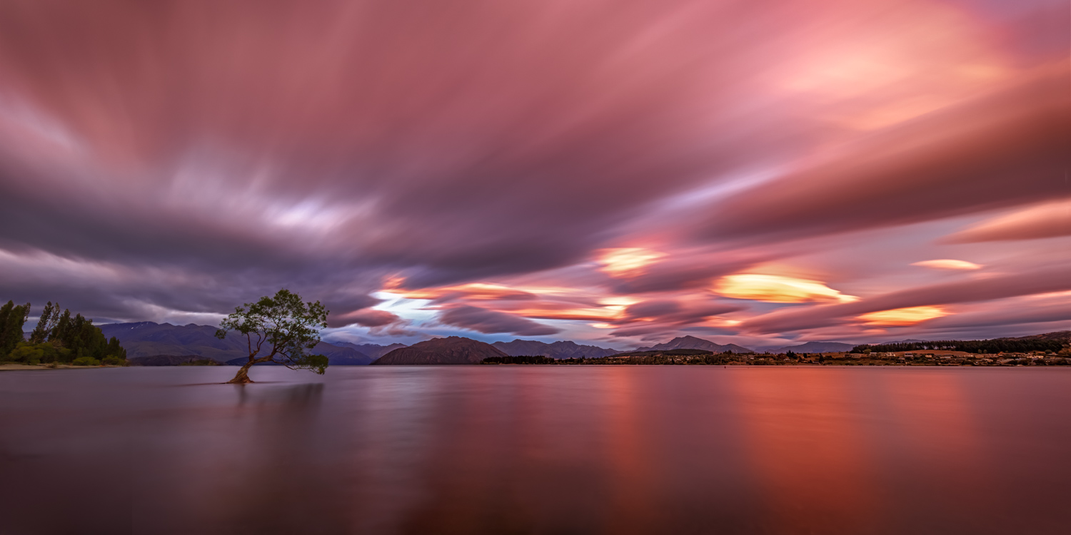 Landscape Photography Workshop Tours - The Wanaka Tree, New Zealand, by George Triantafillou