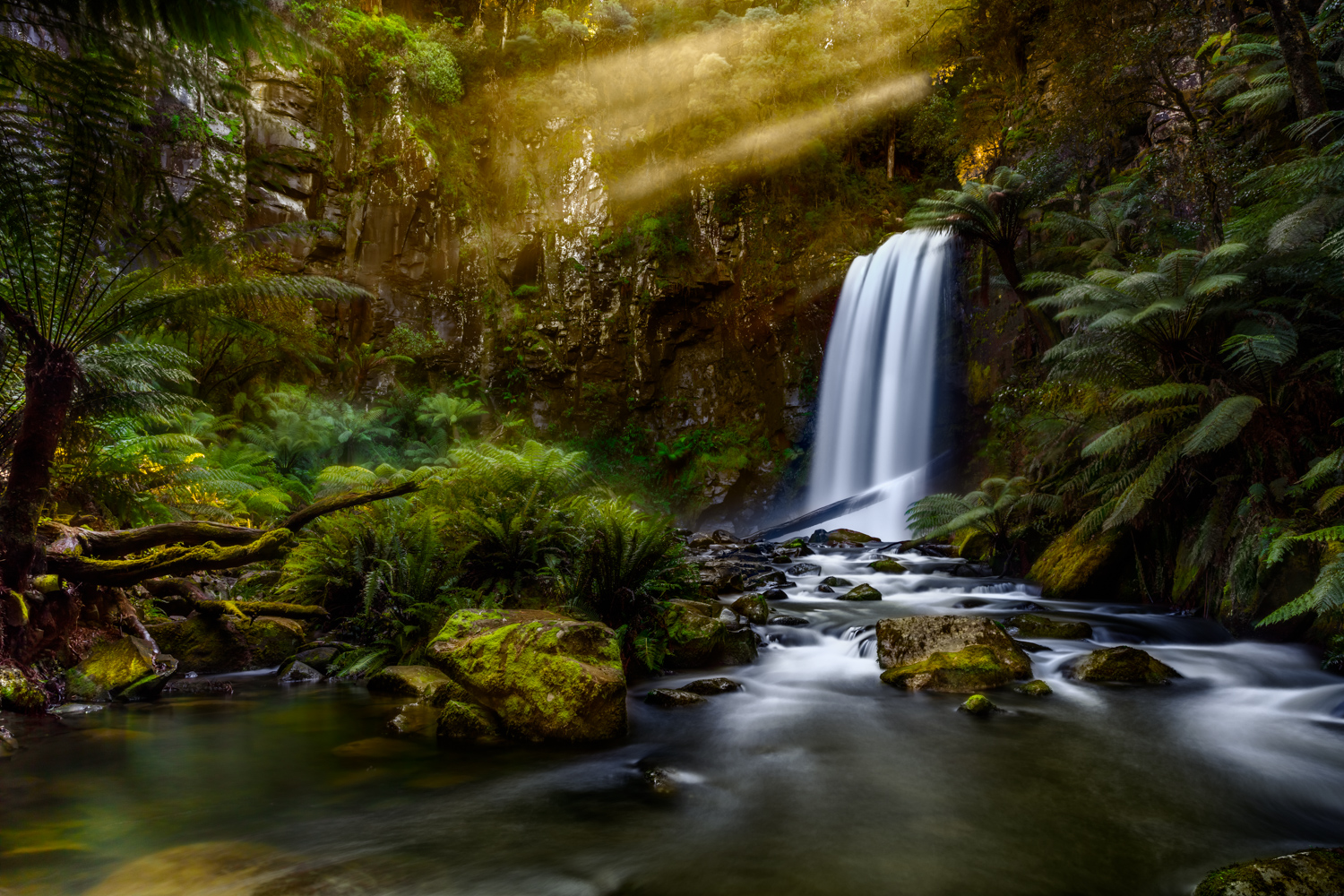 Great Ocean Road Photography Tour | Landscape Photography | Waterfall Photography | Hopetoun Falls | Beech Forest