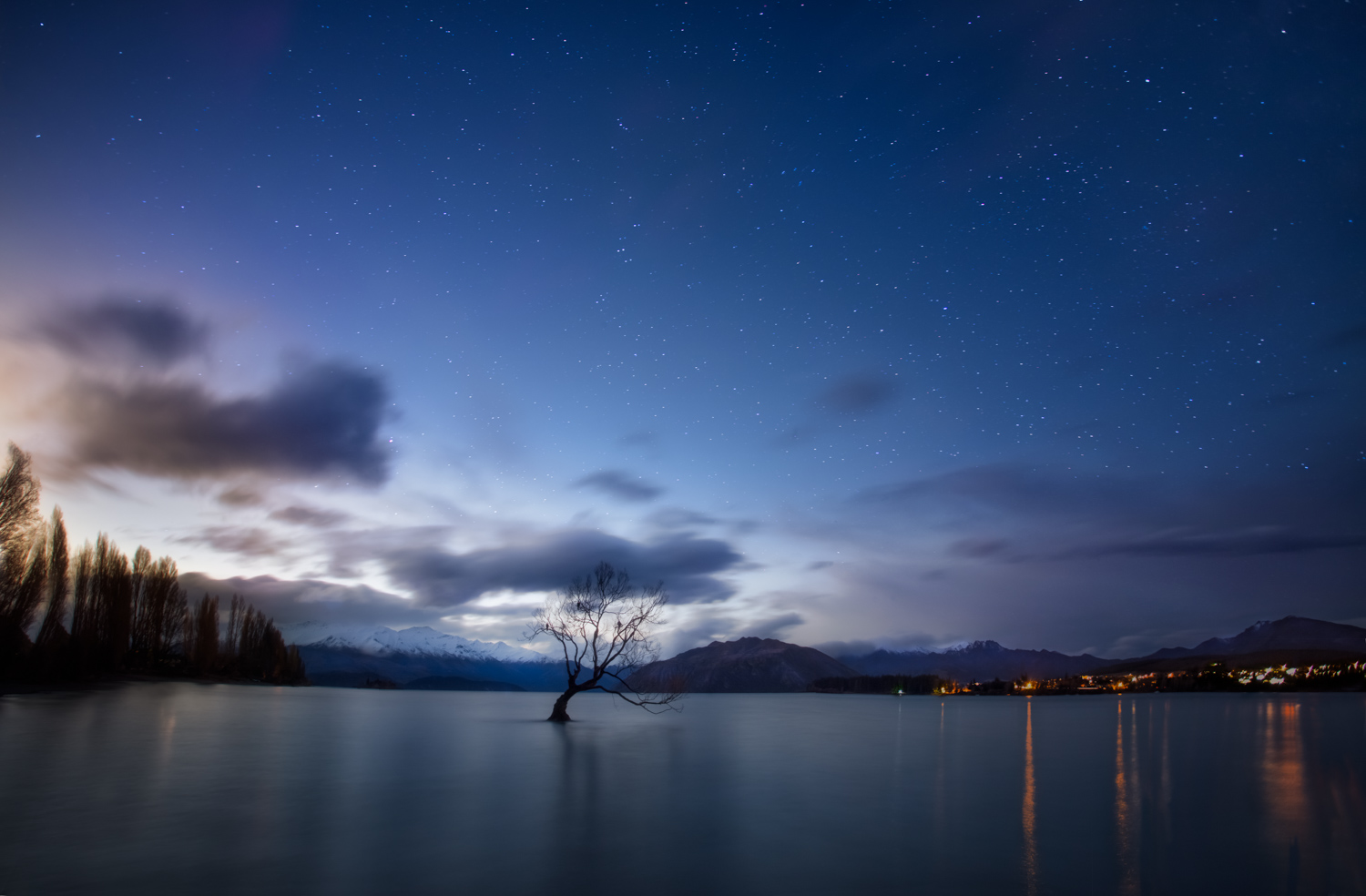 Night Sky Photography , New Zealand 6 day tour - The Wanaka Tree by George Triantafillou