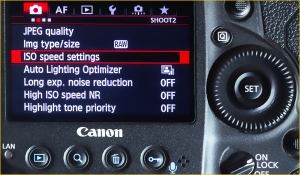 Canon how to set ISO Settings - Tips for getting razor-sharp photos from your camera | We Are Raw Photography