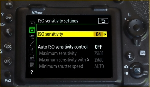Nikon how to set ISO Settings - Tips for getting razor-sharp photos from your camera | We Are Raw Photography