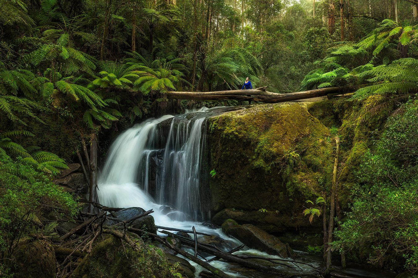 Amphitheatre Falls, Noojee | 1 Day Waterfall Photography Workshop | Holiday with We Are Raw Photography Tours