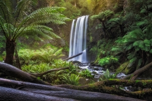 Hopetoun Falls - Waterfall Photography, Great Ocean Road, Australia | Holiday with We Are Raw Photography Tours