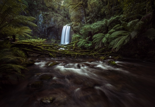 Moody Landscape Photography - Hopetoun Falls - Beech Forest, Great Ocean Road, Australia | Holiday with We Are Raw Photography Tours