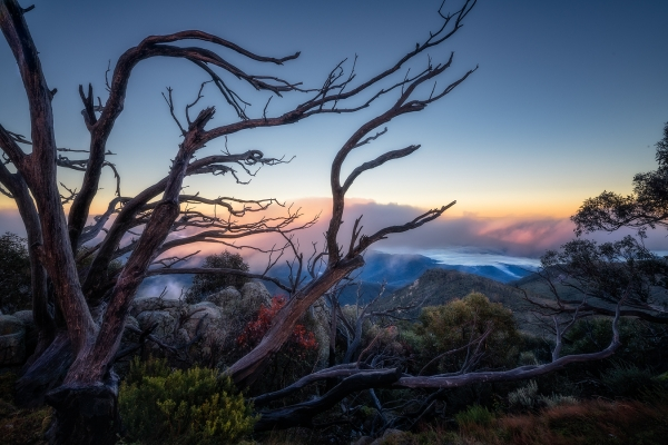 The Horn, Mount Buffalo National Park | Landscape Photography Tours | We Are Raw Photography Tours- Autumn