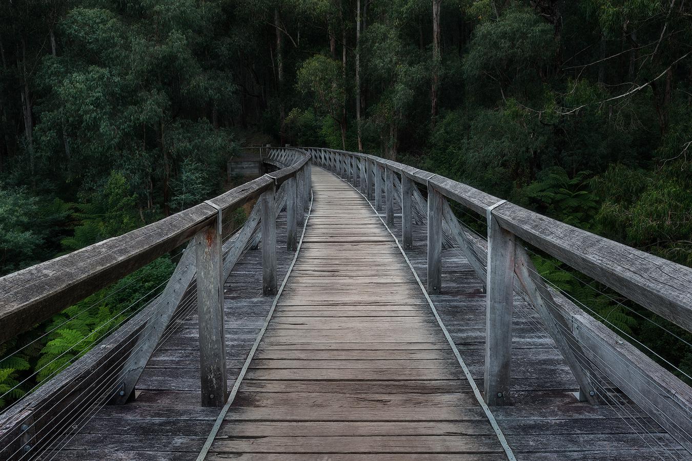 Noojee Trestle Bridge Toorongo Falls | 1 Day Waterfall Photography Workshop | We Are Raw Photography