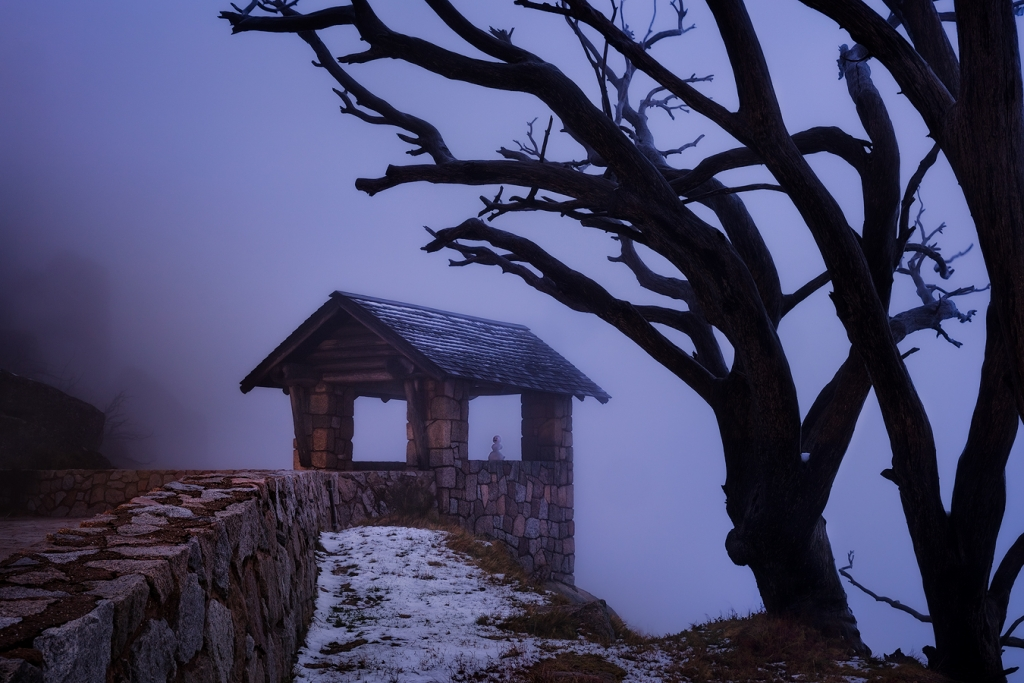 Australian Winter Photography Tour | We Are Raw Photography Mount Buffalo High Country, Victoria