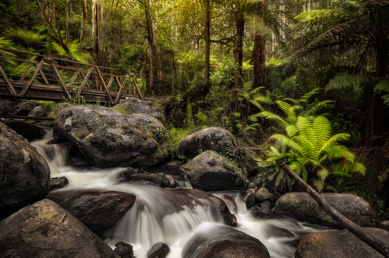Toorongo Falls Noojee | 1 Day Waterfall Photography Workshop | Holiday with We Are Raw Photography Tours