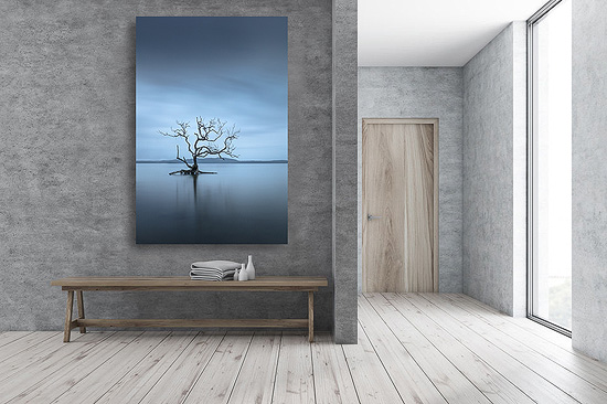 wall art photo print under acrylic glass face mount displayed in entryway