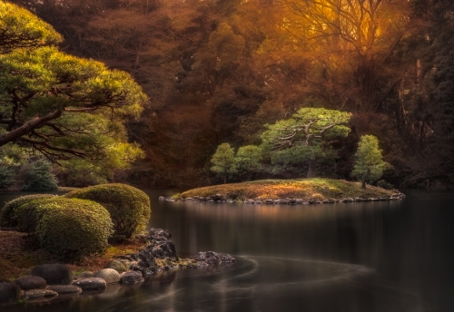 Viva Karolina | Japanese Garden Art for Sale | Shinjuku Gyoen Wall Art