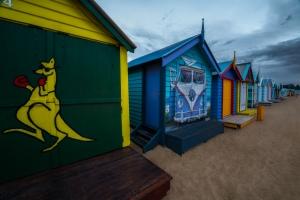 Brighton Beach Boxes photography workshop showing Australia kangaroo box